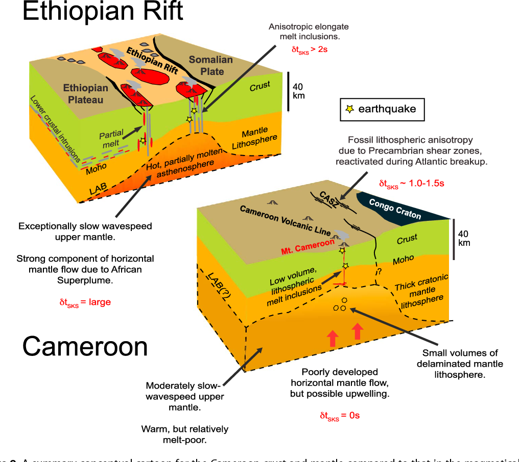 cameroon volcanic line