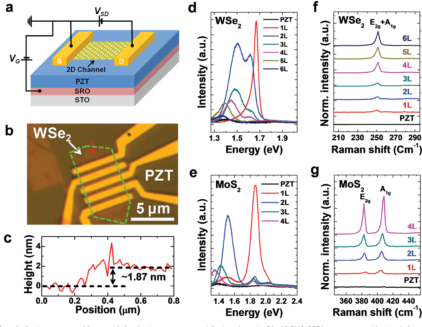 Figure 1 From Ferroelectrically Gated Atomically Thin Transition Fig 8 Circuit Diagram Of Electric Shown In 7 Device Geometry And Raman Photoluminescence Spectra A Schematic