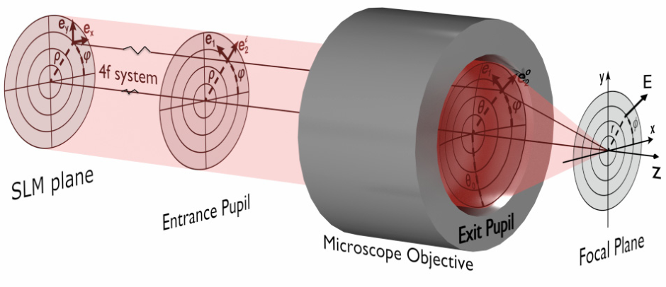 synthesis of highly focused fields with circular polarization at any